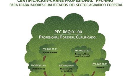 STIHL presenta su nuevo programa de cualificación forestal