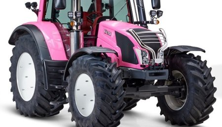 """""""El gato rosa"""" levanta pasiones entre los jóvenes agricultores"""