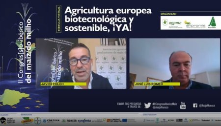 Biotecnología europea en maíz, 20 años de experiencia y 20 de retraso frente al resto del mundo