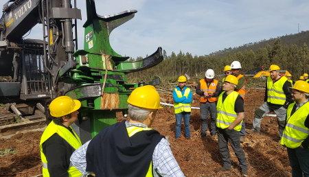 Forest Pioneer presenta la nueva taladora de cizalla TMF 600, especial para eucalipto