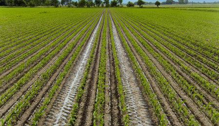 LEMKEN lanza el configurador en línea para la sembradora Azurit 9