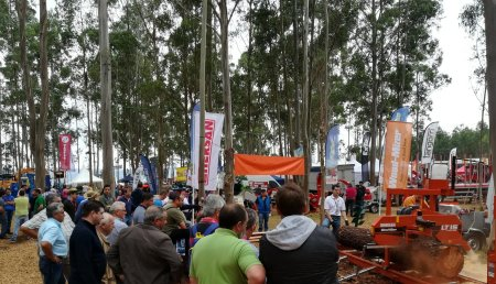 La feria Galiforest Abanca será del 8 al 10 de julio de 2021 para garantizar su alto nivel de resultados y su condición de referente forestal